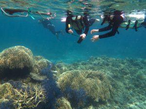 kerama snorkeling spot