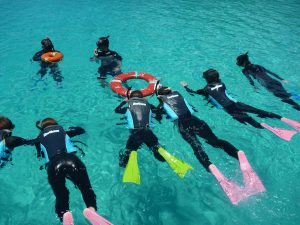 try snorkeling