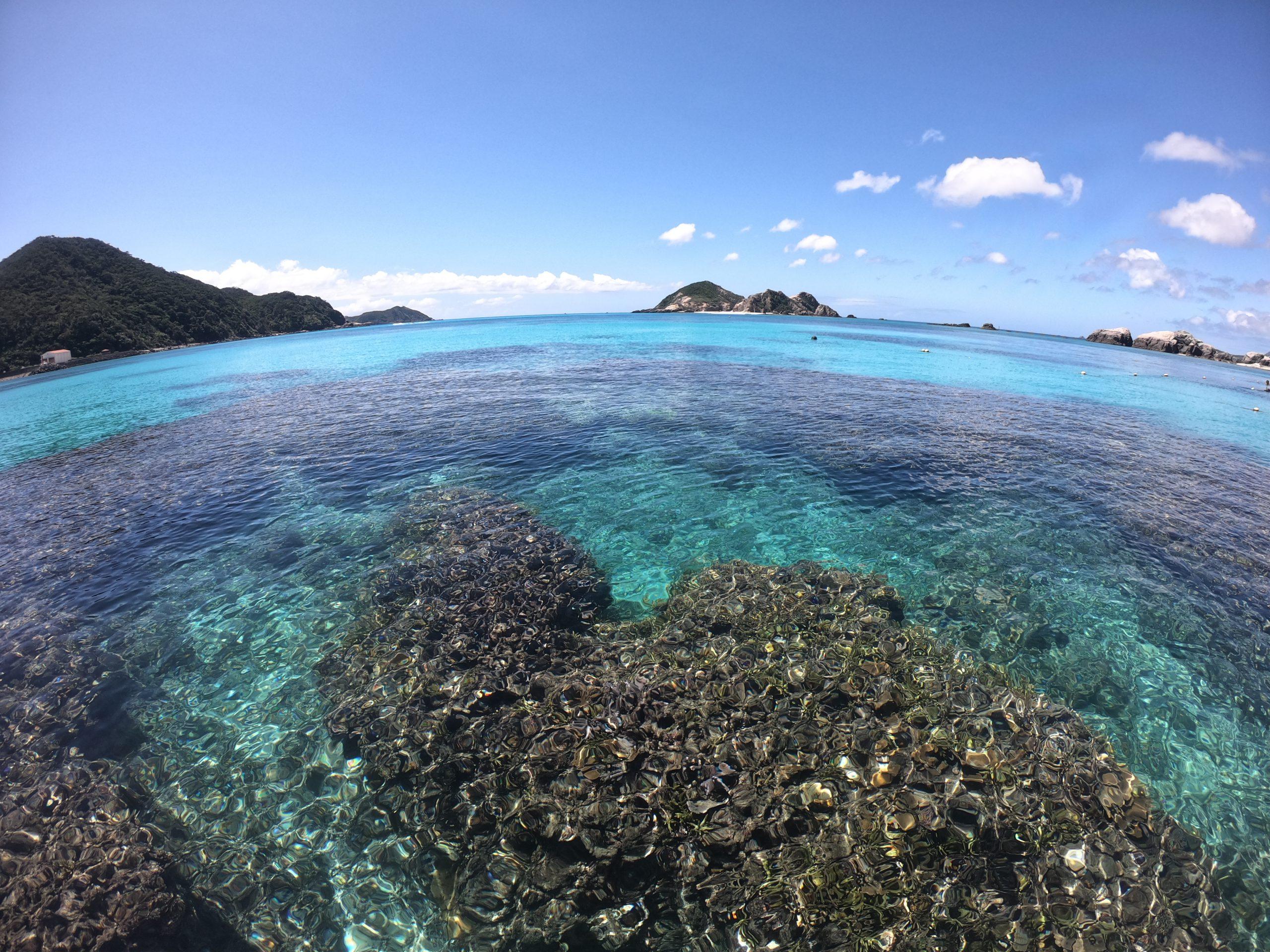 aharen beach coral